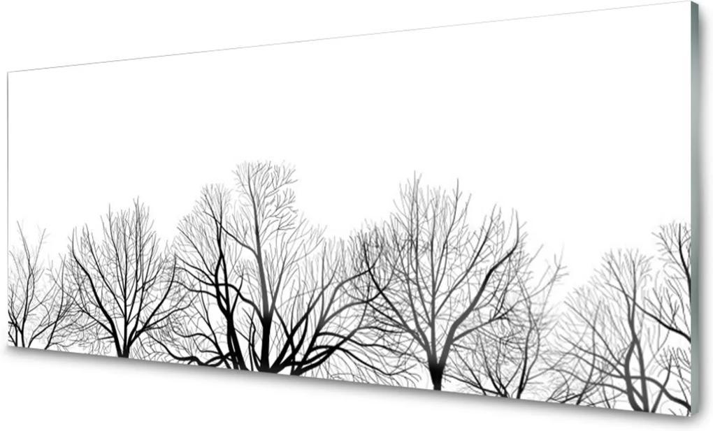 Sklenený obklad Do kuchyne Stromy Rastlina Príroda