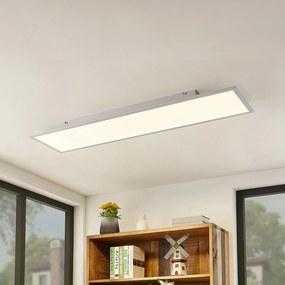 Lindby Luay LED panel, 3000 – 6000K, 30 x 120cm
