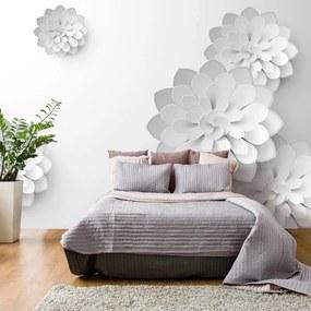 Fototapeta - White Garden 100x70