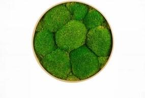 Machový kruh s kopcovitým machom Bolmoss 105 cm prírodna zelená
