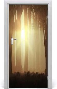 Fototapeta na dvere  hmla v lese