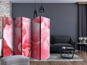 Paraván kvet ružovej Azalky