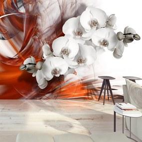 Bimago Fototapeta - Orchid on fire II 400x280 cm