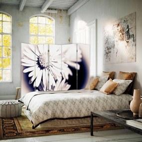 CARO Paraván - Flowers In The Sun By R. Kulik | päťdielny | obojstranný 180x150 cm