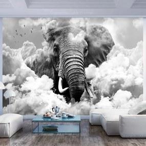 Fototapeta - Elephant in the Clouds (Black and White) 200x140 + zadarmo lepidlo