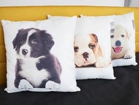 Home collection Dekoračný vankúšik šteniatka 45x45 cm - Labrador
