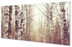 Nástenný panel stromy 140x70cm