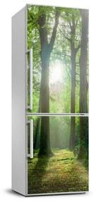 Nálepka tapeta na chladničku Slnko v lese FridgeStick-70x190-f-83761182