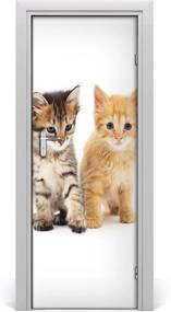 Samolepiace fototapety na dvere  Sivá a červená mačka