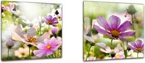 Obraz na skle Styler - Astra Twins Astra Twins sada - 2x 30x30 cm