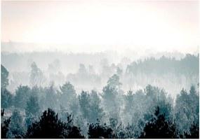 Veľkoformátová tapeta Bimago Winter Forest 400 x 280 cm