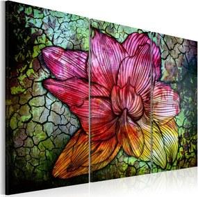 Obraz na plátne Bimago - Duhová květina 120x80 cm