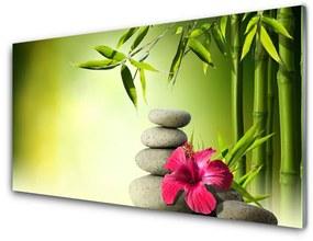 Sklenený obklad Do kuchyne Bambus kvet kamene zen 125x50cm