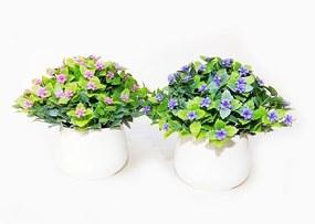 Kvety UH v kvetináči