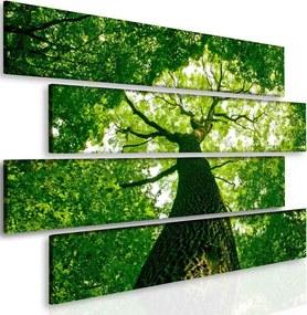 InSmile Obraz relax pod stromem(145x100 cm)