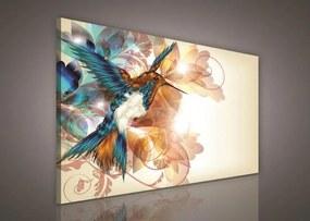 Obraz na plátne, rozmer 100 x 75 cm, kolibrík, IMPOL TRADE PP260O1