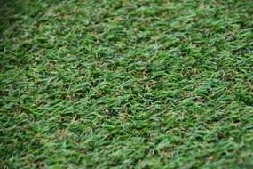 Lano luxusní orientální koberce Travní koberec Camelia metrážní - Rozměr na míru cm