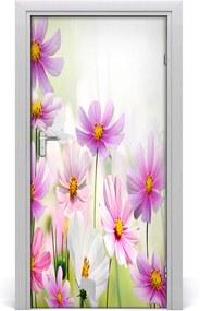 Fototapeta samolepiace  poľné kvety