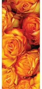 Dverová fototapeta - DV0656 - Oranžové ruže 91cm x 211cm - Vliesová fototapeta