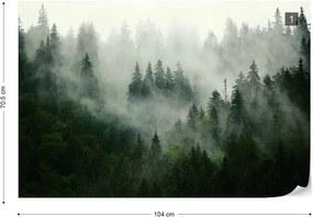 Fototapeta GLIX - Misty Forest + lepidlo ZADARMO Vliesová tapeta  - 254x184 cm