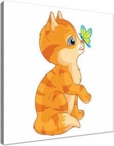 Obraz na plátne Oranžová mačička 30x30cm 3015A_1AI