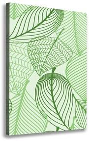 Foto-obraz canvas do obývačky Zelené lístie pl-oc-70x100-f-69861578