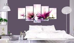 Obraz ružové magnólie - Pink flowers: magnolias
