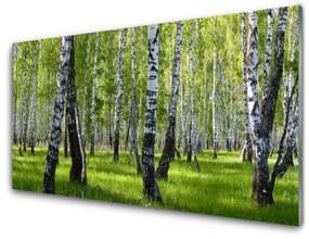 Nástenný panel Les príroda 125x50cm