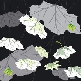 Dimex fototapeta Listy na čiernom pozadí L-334   220 x 220 cm
