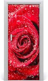 Fototapeta samolepiace  červená ruža