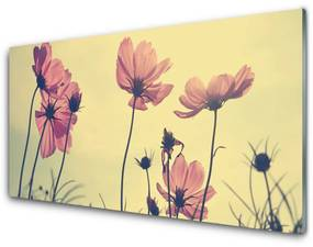 Sklenený obklad Do kuchyne Kvety rastlina príroda 100x50cm