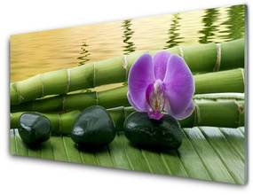 Nástenný panel Kvet kamene bambus príroda 100x50cm