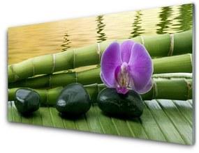 Nástenný panel Kvet kamene bambus príroda 140x70cm