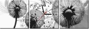 Tlačený obraz s hodinami Šedé púpavy 90x30cm ZP4116A_3A