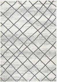 Zala Living - Hanse Home koberce Kusový koberec Capri 102552 - 70x140 cm