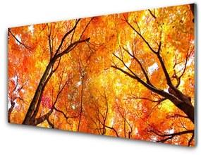 Nástenný panel Stromy príroda 120x60cm