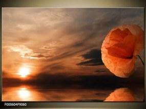 Obraz na plátne Zblúdilý kvet, Obdĺžnik 90x60cm 60,8 €