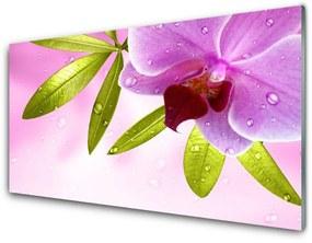 Nástenný panel Kvet listy rastlina 140x70cm