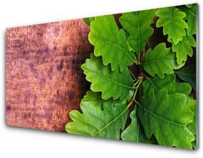 Nástenný panel Listy dub 100x50cm
