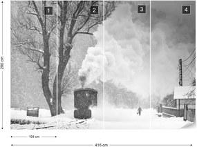 Fototapeta GLIX - A Winter's Tale + lepidlo ZADARMO Vliesová tapeta  - 254x184 cm