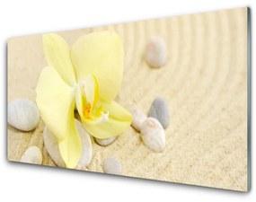 Nástenný panel Kvety rastlina príroda 100x50cm