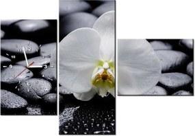 Tlačený obraz s hodinami Biela orchidea 100x70cm ZP1708A_3AW