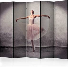 Paraván - Classical dance - poetry without words [Room Dividers] 225x172