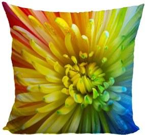 Vankúš Dúhové kvety (Veľkosť: 55 x 55 cm)