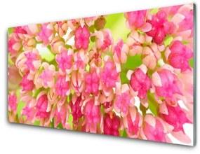 Nástenný panel Kvet lotosu 120x60cm