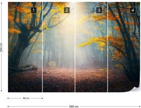 Fototapeta GLIX - The Enchanted Forest 2 + lepidlo ZADARMO Vliesová tapeta  - 104x70 cm