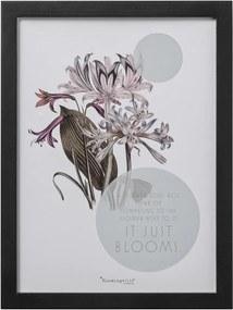Obrázok v ráme, OWI, 40x30 cm Bloomingville 50500052