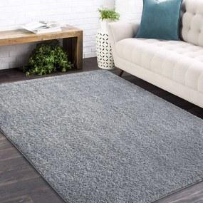 DomTextilu Štýlový koberec v sivej farbe 26696-151392