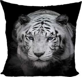 Vankúš Biely tiger (Veľkosť: 55 x 55 cm)
