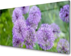 Sklenený obklad Do kuchyne Fialové Kvety Lúka